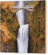 Cascading Gold Waterfall Wood Print