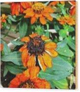 Cascading Orange Wood Print