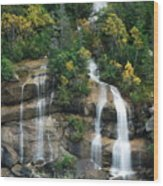 Cascading Skagway Waterfall  Wood Print