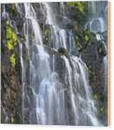 Cascading Springs Snake River Canyon Wood Print