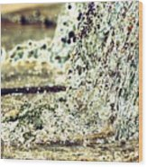10196 Cascading Water 01b Wood Print