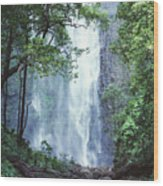 Cascading Waterfall Wood Print