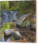 Cascading Waterfall At Sweet Creek Falls Trail Wood Print
