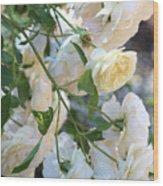 Cascading White Roses Wood Print