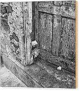 Casco Viejo Door Mono Wood Print