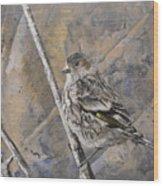 Cassin's Sparrow Wood Print