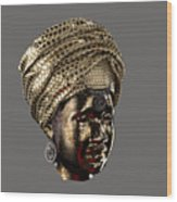 Cast In Character 2013 - Side View Transparent With Red Spotlight Wood Print