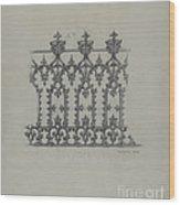 Cast Iron Fence Wood Print
