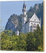 Castle 2 Wood Print