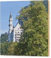Castle 4 Wood Print