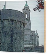 Castle And Church Athlone Ireland Wood Print