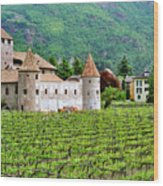 Castle And Vineyard In Italy Wood Print
