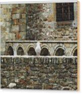 Castle Bird Wood Print