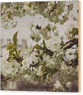 Castle Blossoms Wood Print