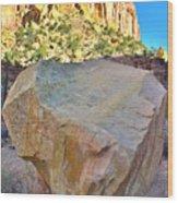 Castle Boulder Wood Print
