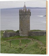Castle By The Sea In Ireland Wood Print