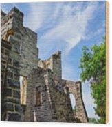 Castle Corner Ha Ha Tonka Wood Print