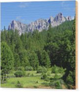 Castle Crags Wood Print