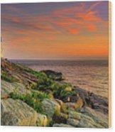 Castle Hill Lighthouse - Newport Rhode Island Wood Print by Thomas Schoeller