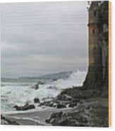 Castle Laguna Beach  Wood Print