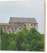 Castle Neuhaus Wood Print