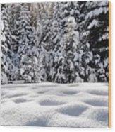 Castle Peak Winterland  Wood Print