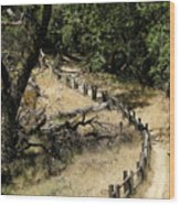 Castle Rock Sp Wood Print