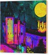 Castle Segovia Wood Print