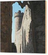 Castle Tower Thru Window Wood Print