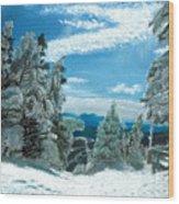 Castlerock Run Wood Print