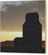 Castles Of The Farmlands Wood Print