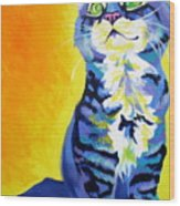 Cat - Here Kitty Kitty Wood Print by Alicia VanNoy Call