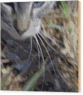 Cat A Hunting Wood Print