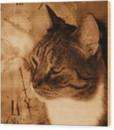 Cat And Clock Wood Print