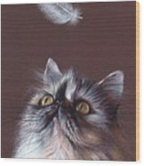 Cat And Feather Wood Print