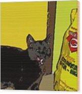 Cat And Rice Wood Print