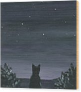 Cat And The Stars Wood Print