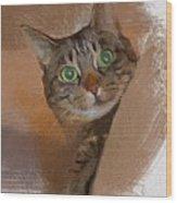 Cat Desire. Wood Print