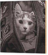 Cat In A Bag Wood Print