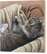 Cat In A Basket Wood Print