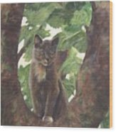 Cat In Tree Wood Print