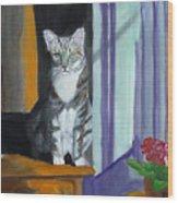 Cat In Window Wood Print