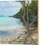 Cat Island Cove Wood Print