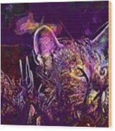 Cat Kitten Mieze Tiger Cat  Wood Print
