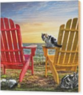 Cat Nap At The Beach Wood Print by Debra and Dave Vanderlaan