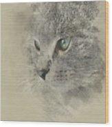 Cat, Nikita Il Gatto. Wood Print