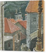 Cat Of The Town Of Kotor Wood Print