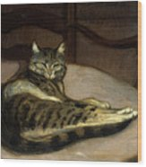 Cat On A Chair Wood Print