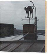 Cat On A Cool Tin Roof Wood Print
