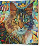 Cat On Colors Wood Print